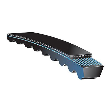 AX76 Size AX Section 78 Outside Circumference 1//2 Width 5//16 Height Gates AX76 Tri-Power Belt